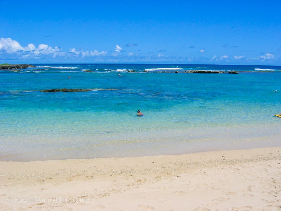 kuilima cove snorkeling