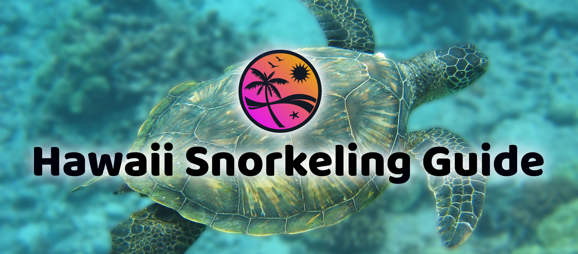 Hawaii Snorkeling Secrets! The Complete Guide to Snorkeling in Hawaii!